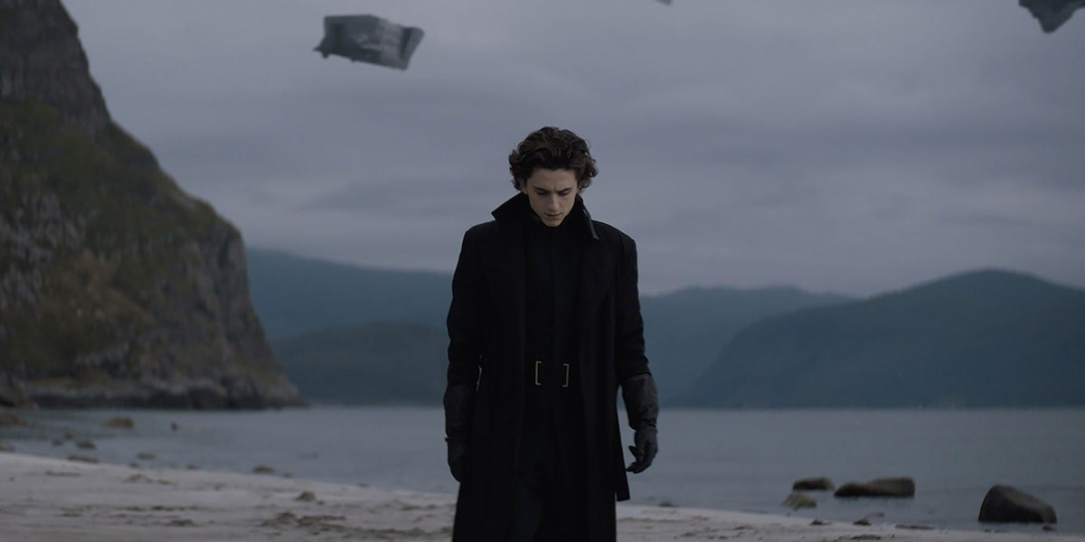 Timothee Chalamet in Dune