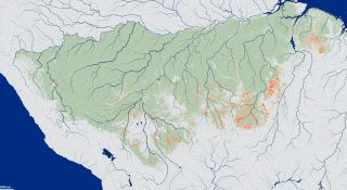 Areas in red shows where understory fires occurred in the Amazon rainforest from 1999-2010.