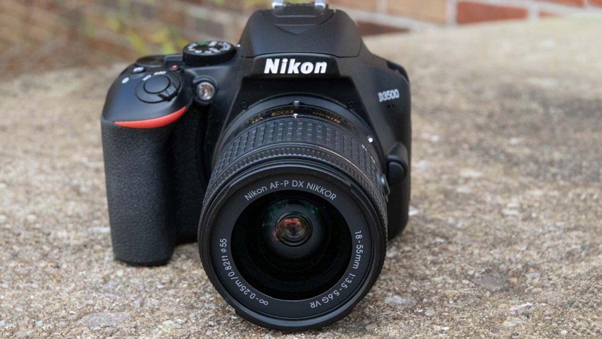 Best DSLRs of 2019 - Cameras for Beginner, Intermediate