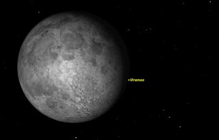 The moon will block Uranus like a game of cosmic peek-a-boo on Wednesday night (Sept. 10, 2014) for observers across northeastern North America. Positions of Uranus and the moon are shown in this Starry Night sky map.