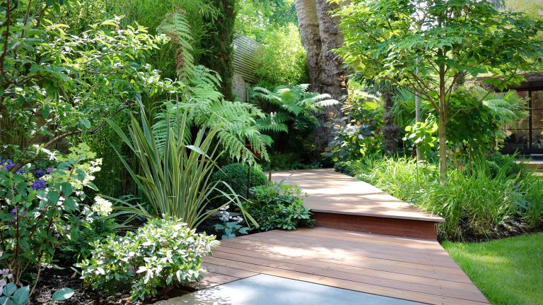 garden path ideas with a curved decked pathway leading through a garden