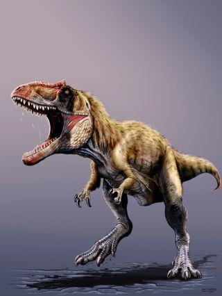 Siats meekerorum dinosaur