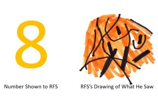 """When shown a number """"8,"""" RFS saw a bunch of curvy lines."""