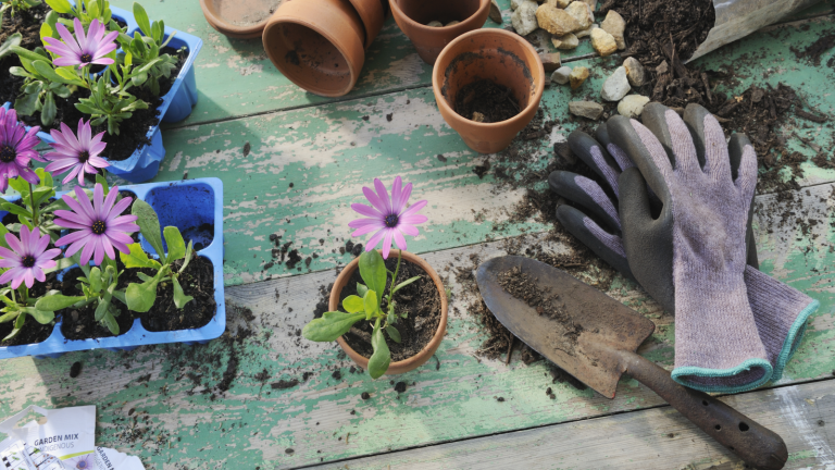 gifts for gardeners - gardening accessories