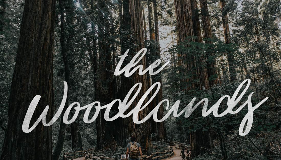 The Woodlands script font