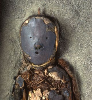 A so-called black mummy created by the ancient South American Chinchorro people. Mummies like these were made between 7,000 and 4,800 years ago.