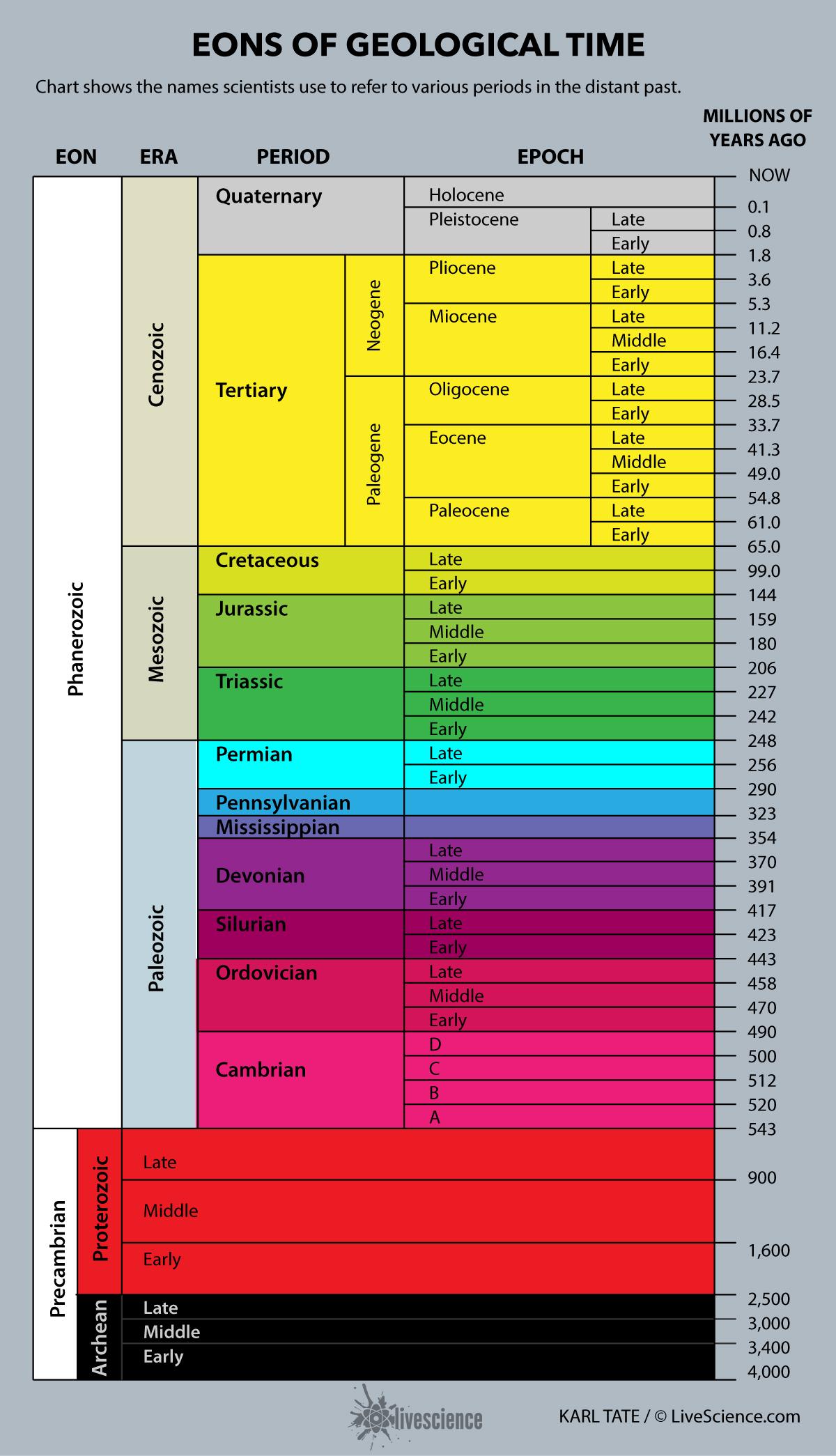 evolution time chart