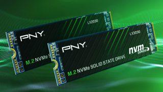PNY LX3030 and LX2030 SSDs