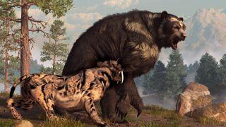 Short-faced bears were North America's largest predatory mammal.