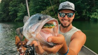 how to choose bass fishing bait