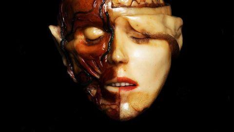 Black Moth - Anatomical Venus