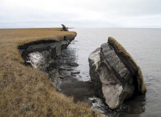 A block of ice-rich permafrost collapses along Drew Point, Alaska.