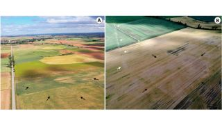 Aerial photographs of new Roman camps in northern Spain