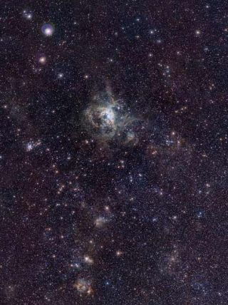 Baby Stars Sparkle in New Photo of Tarantula Nebula