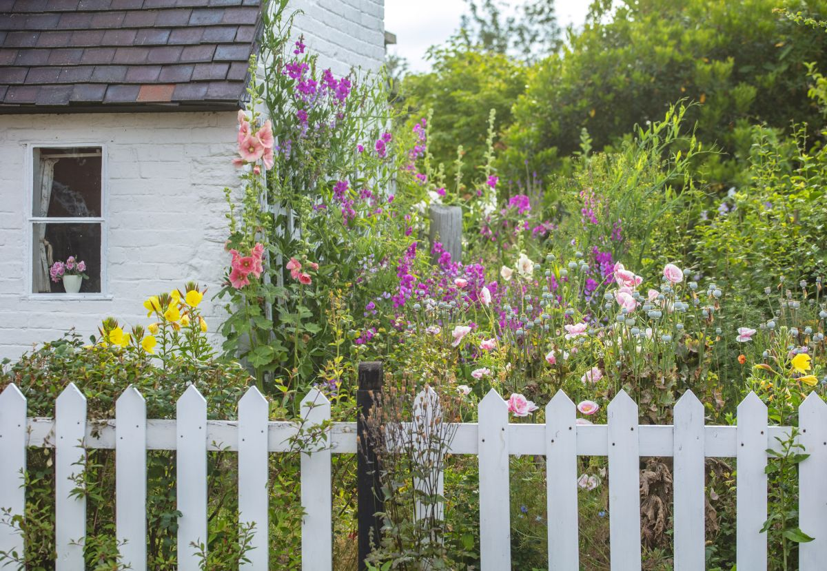 Real garden: enjoy this timeless cottage garden created on a budget
