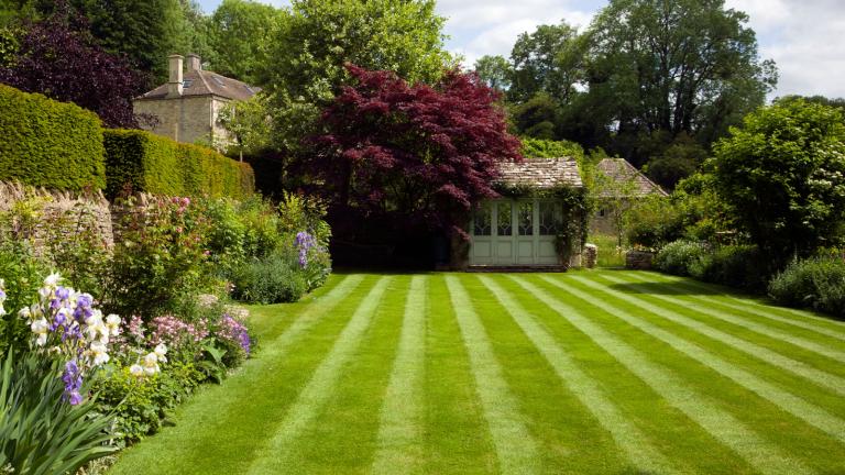 perfect lawn stripes