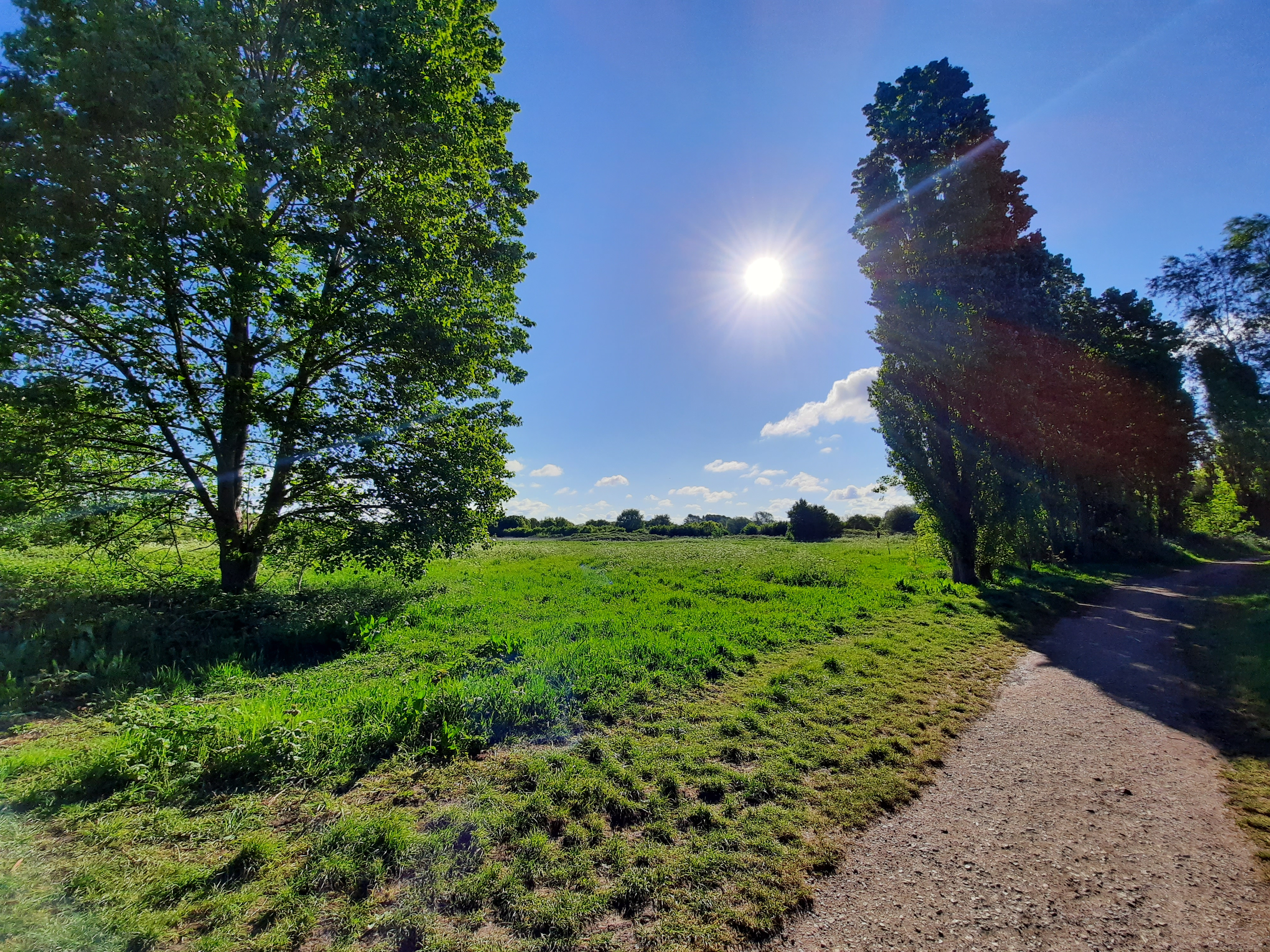 Dynamic range enhancement is about as effective as Samsung's more expensive phones: sun in the shot, but the foreground is still fairly bright and clear.