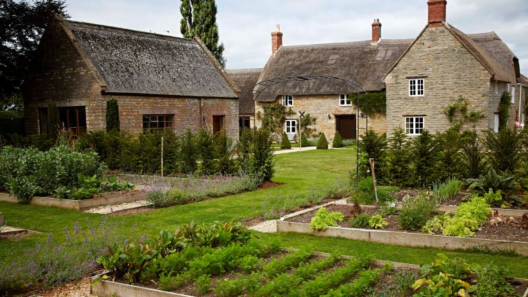 cottage garden layout ideas: veg patch