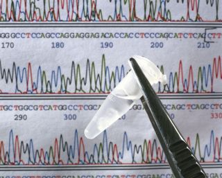 A sample of DNA in front of a DNA sequence.
