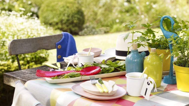Poppy Okotcha forest garden tips