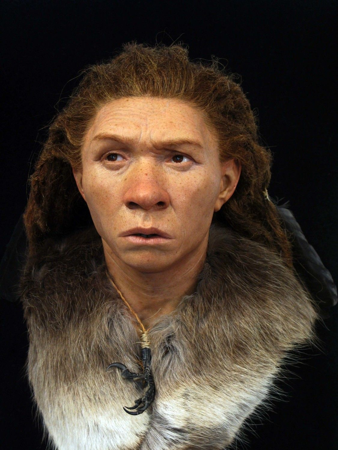 Faces Re-Created Of Ancient Europeans, Including -8437
