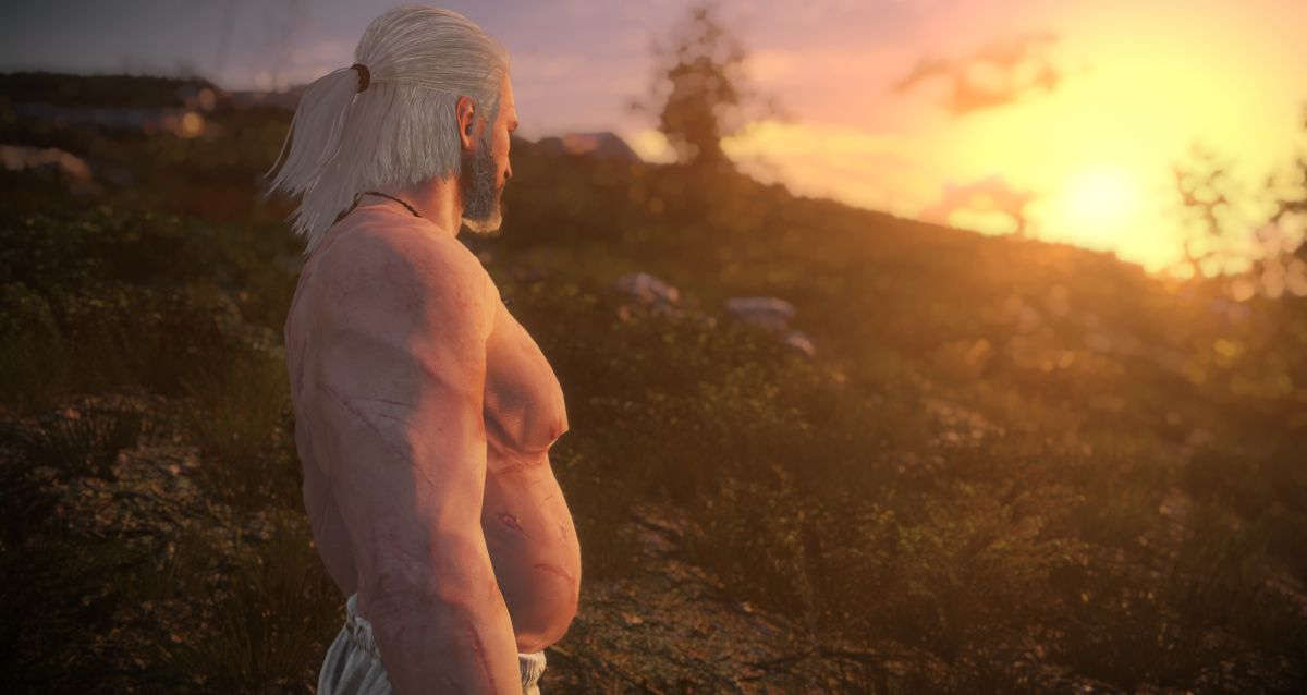 This mod gives Geralt a dad bod