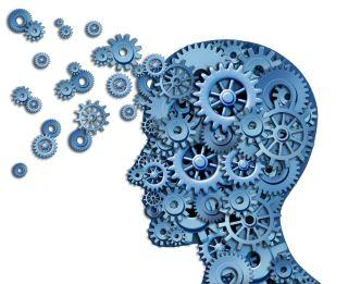 Brain Knowledge