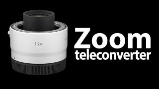 Canon zoom teleconverter