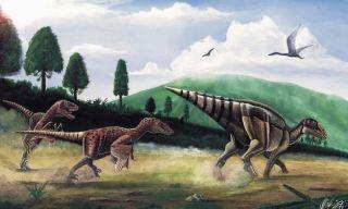 Hunted duck-billed dinosaur