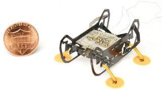 HAMR-E robot