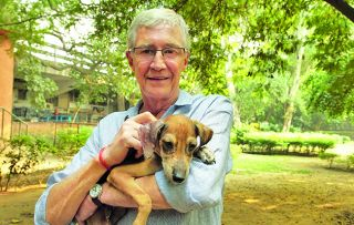 For the Love of Dogs: India