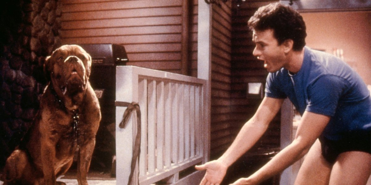 Beasley the Dog and Tom Hanks in Turner and Hooch