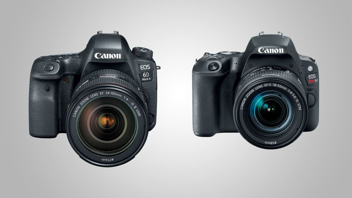 Canon Unveils Eos 6d Mark Ii And Eos Rebel Sl2 Techradar