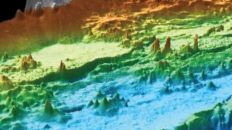 Hundreds of towering hydrothermal chimneys discovered on seafloor off Washington J9KPLDVDaMY2bqRmXdpgrC-970-80