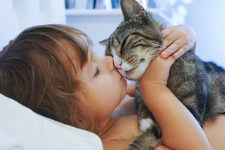 A child holds close and kisses a cat.