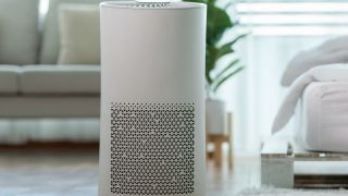 Air purifier on floor in living room