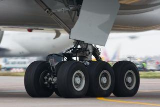 Wheel-well stowaways board planes by climbing the landing gear of a plane preparing for takeoff. Seen here is the landing gear of a Boeing 777.