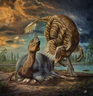 giant oviraptorosaurs nesting