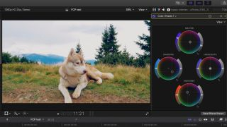 Final Cut Pro tutorials