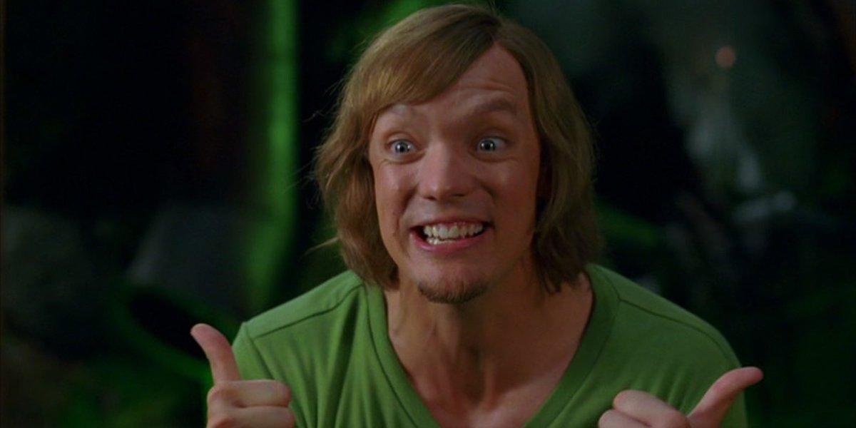 Matthew Lillard as Shaggy in Scooby-Doo