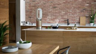 How the new Dyson Formaldehyde Purifier protects your health (and cools the air)