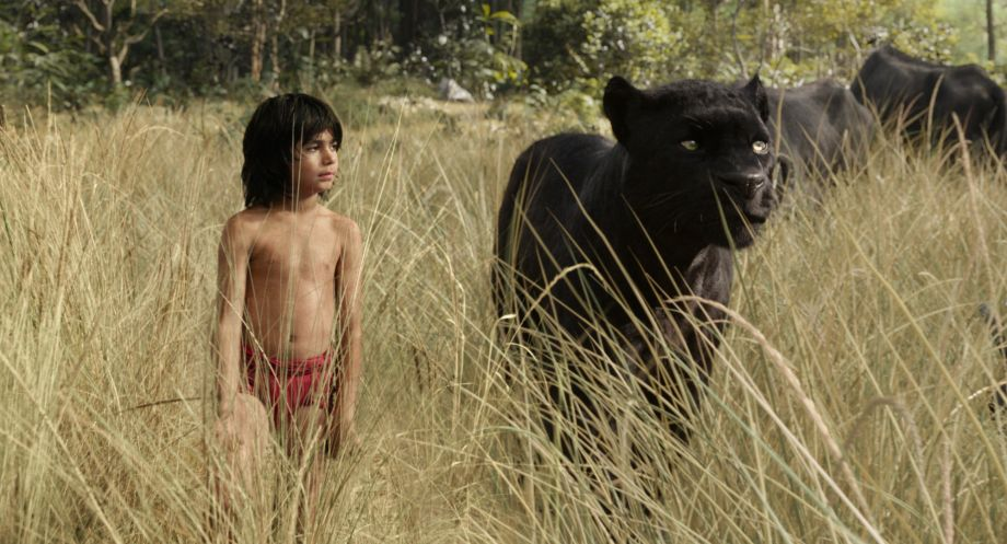 The stars of the new Jungle Book film