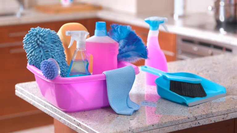 cleaning products, cloth, spray and dustpan and brush