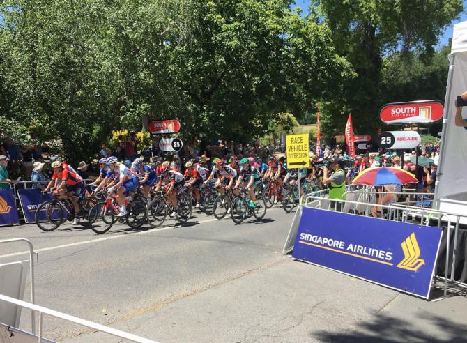 The Tour Down Under field