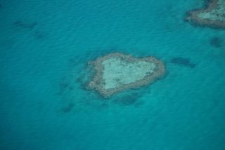 Heart Reef in the Great Barrier Reef