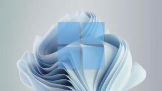 Windows 11 wallpaper superimposed with Windows 11 logo