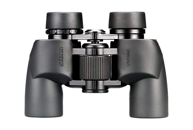 The best binoculars in 2019: for birdwatching, sports and more