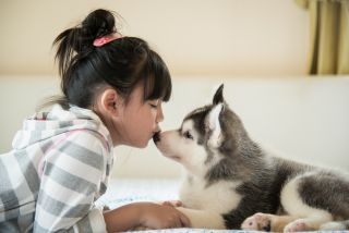 Girl kisses dog on nose