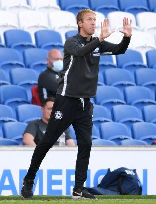 Brighton and Hove Albion v Newcastle United – Premier League – Amex Stadium