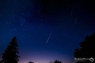 2014 Perseid Meteors Over Mt. Palomar